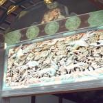 社内旅行 京都~奈良④の詳細へ