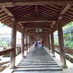 社内旅行 京都~奈良⑦の詳細へ